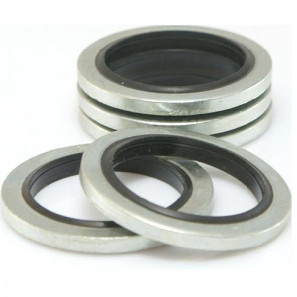 Garlock 295004146 Bearing Isolators #4 image
